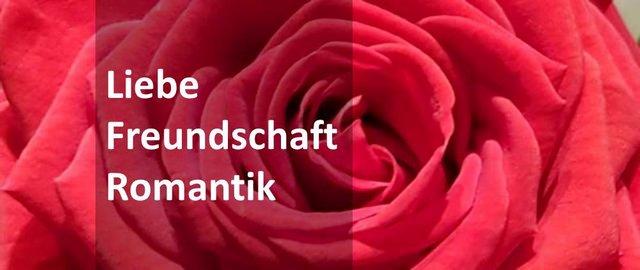 rote Rose, Blumen, Liebe, Freundschaft, Romantik